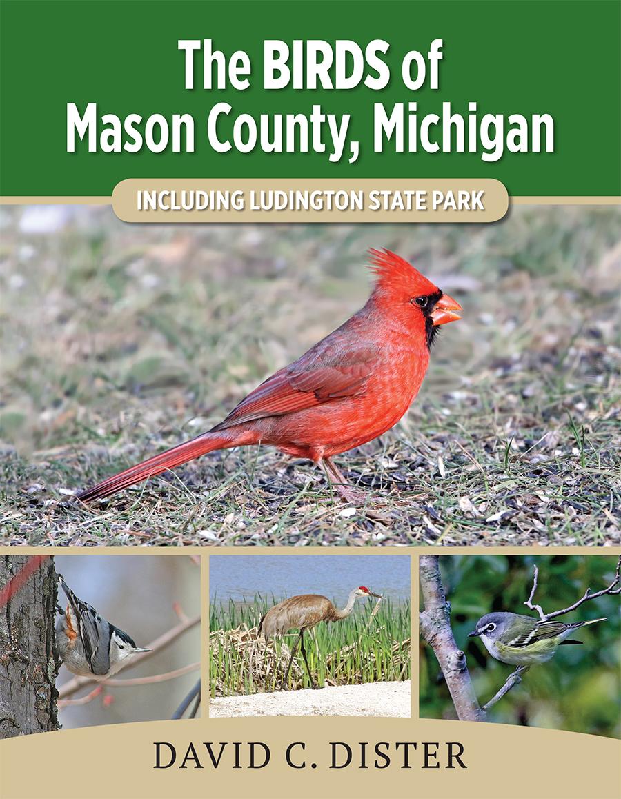 Birds of Mason County